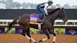 The Breeders Cup Distaff